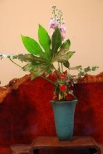 庫裡玄関の花